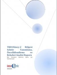 Sektör Tanımlama, Önceliklendirme ve Rekabet Analizi Raporu