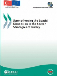 Strengthening the Spatial Dimension in the Sector Strategies of Turkey