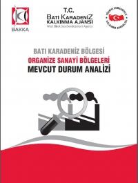 Organize Sanayi Bölgeleri (OSB) Mevcut Durum Analizi