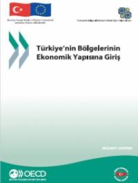Türkiye'nin Bölgelerinin Ekonomik Yapısına Giriş